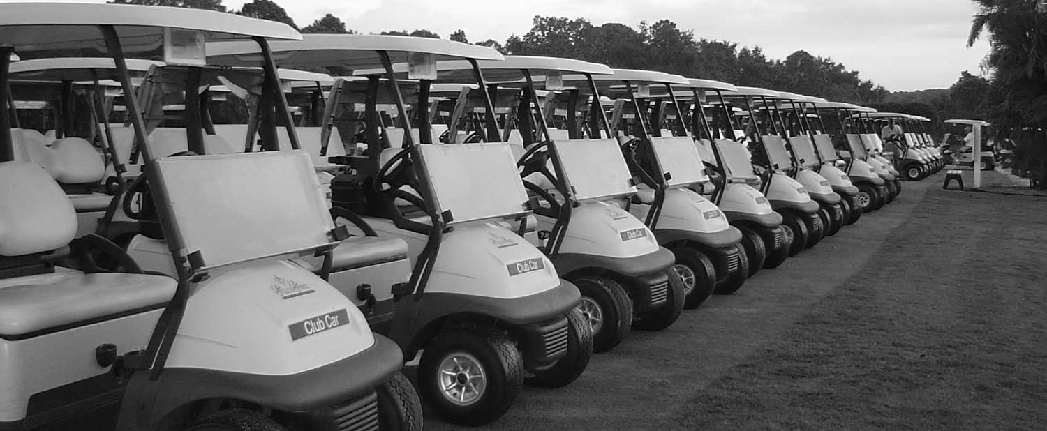 New & Used Golf Carts For Sale & Rent | Top Golf Carts Golf Cart Dealers Chicago on gulf coast golf carts, big golf carts, wicked golf carts, harrisonburg golf carts, mountain golf carts, bag boy golf carts, sweet golf carts, springfield golf carts, working golf carts, new england golf carts, plano golf carts, sayulita golf carts, sears golf carts, kool golf carts, panama city golf carts, red wing golf carts, humble golf carts, isla mujeres golf carts, spirit golf carts, burning man golf carts,